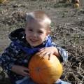 Blake With Halloween Pumpkin